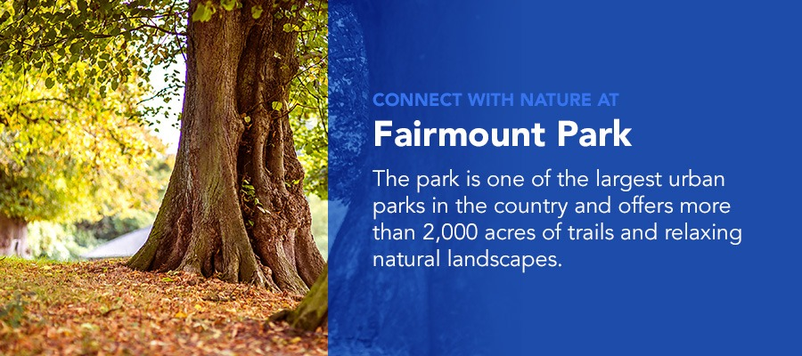 Connect with nature at fairmount parlk this summer